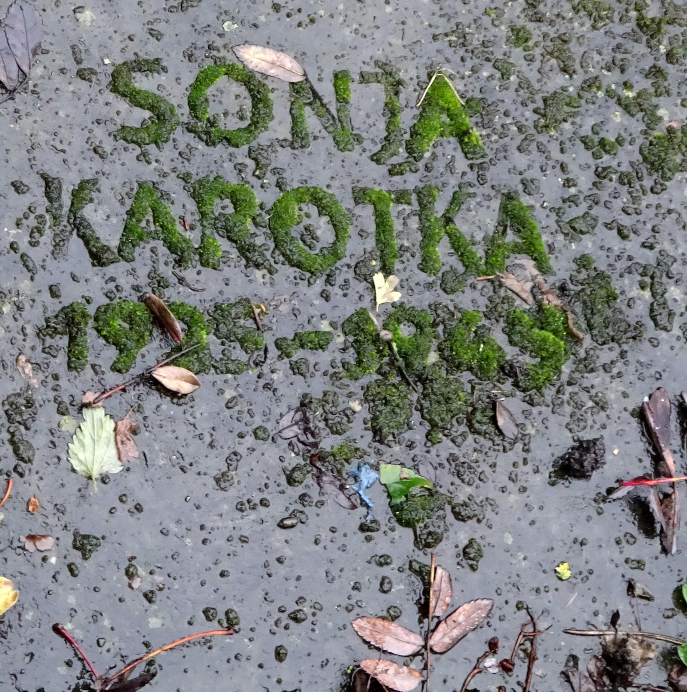 Знают ли твои близкие, где покоится прах их родной, Соня Каротка?