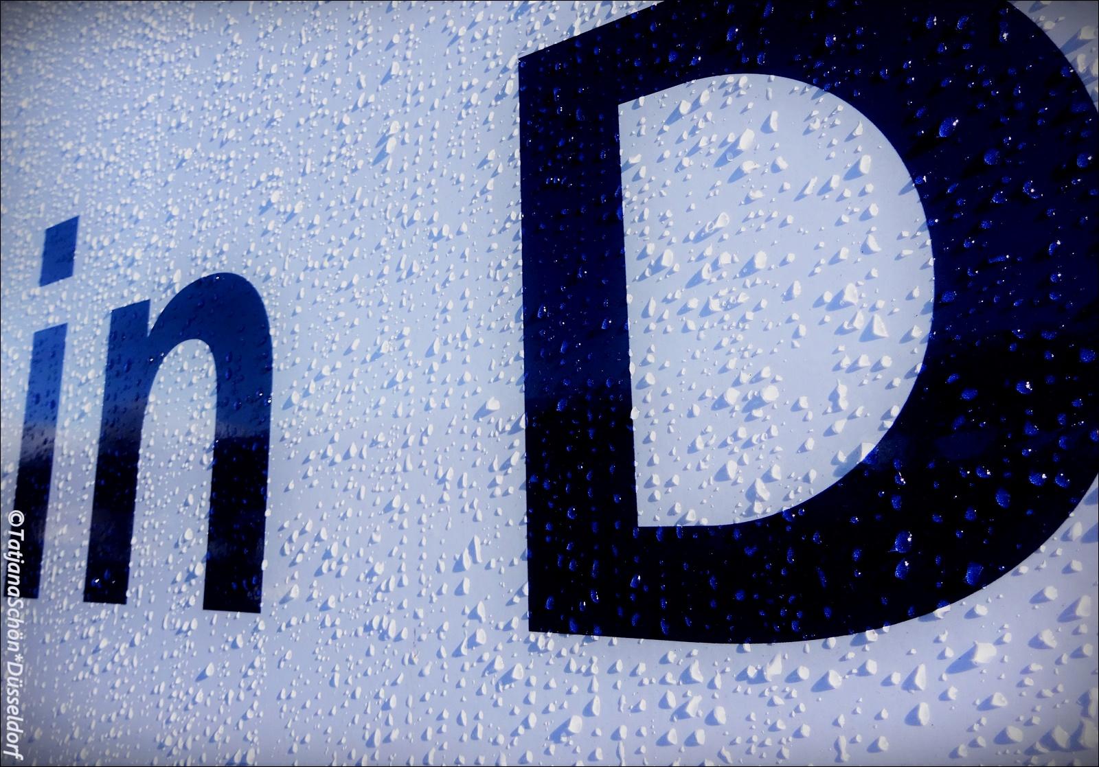Иллюстрирую дождь в Дюссельдорфе - утром после дождя красиво легли капли.