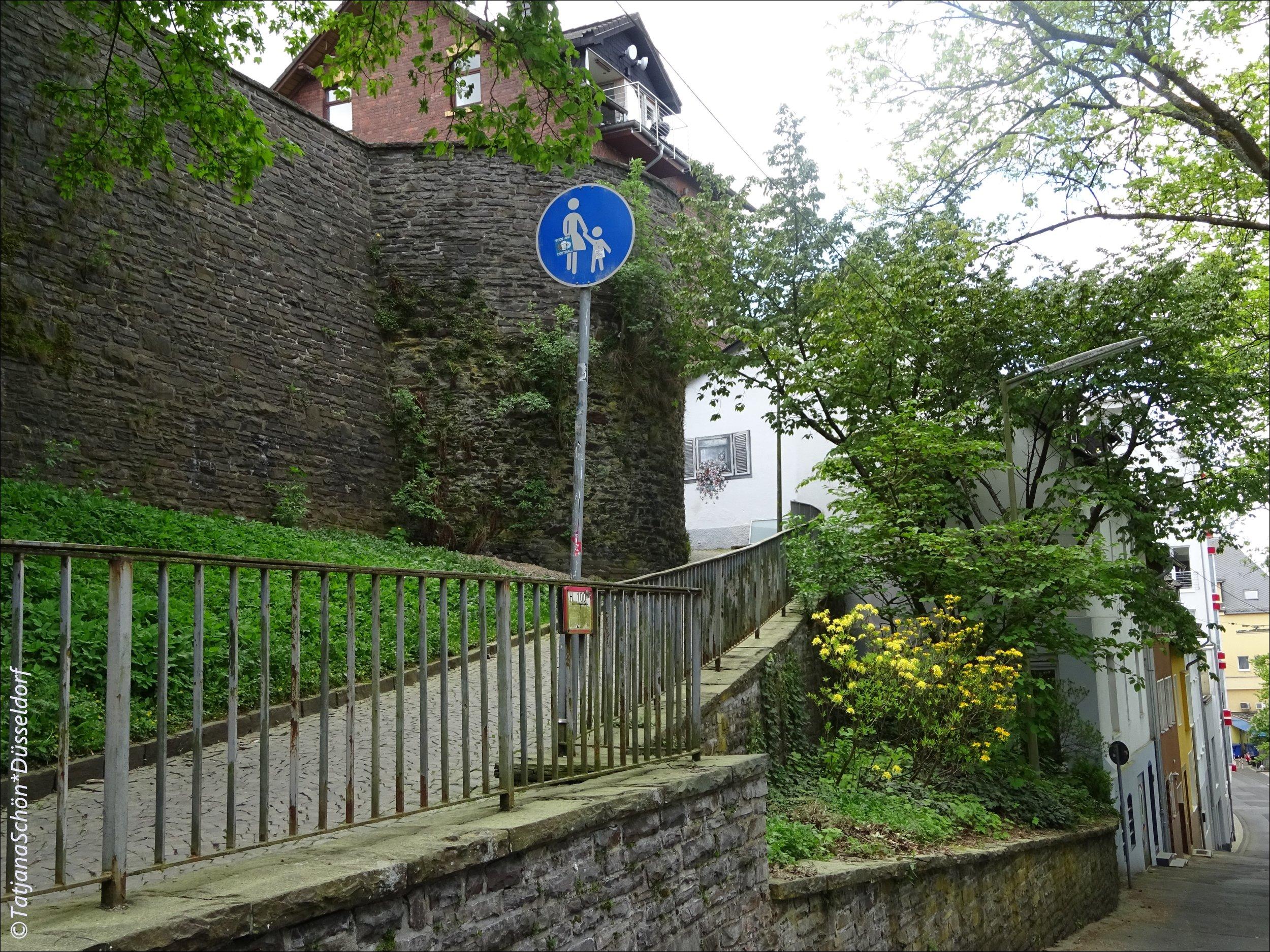 Siegen-natur34-2018.JPG