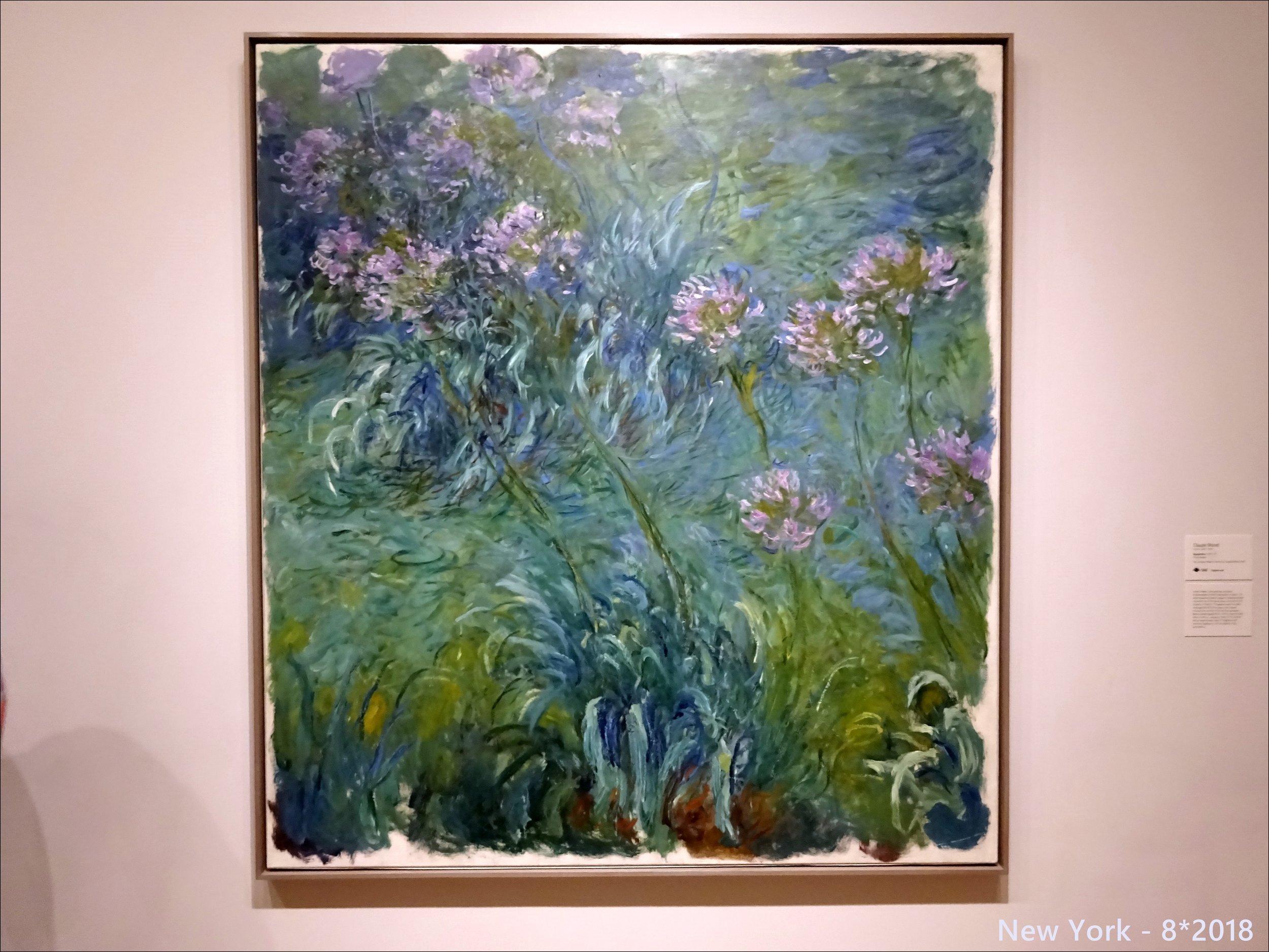 Клод Моне, Агапантус (1914-26) Музей современного искусства в Нью-Йорке, 5 этаж