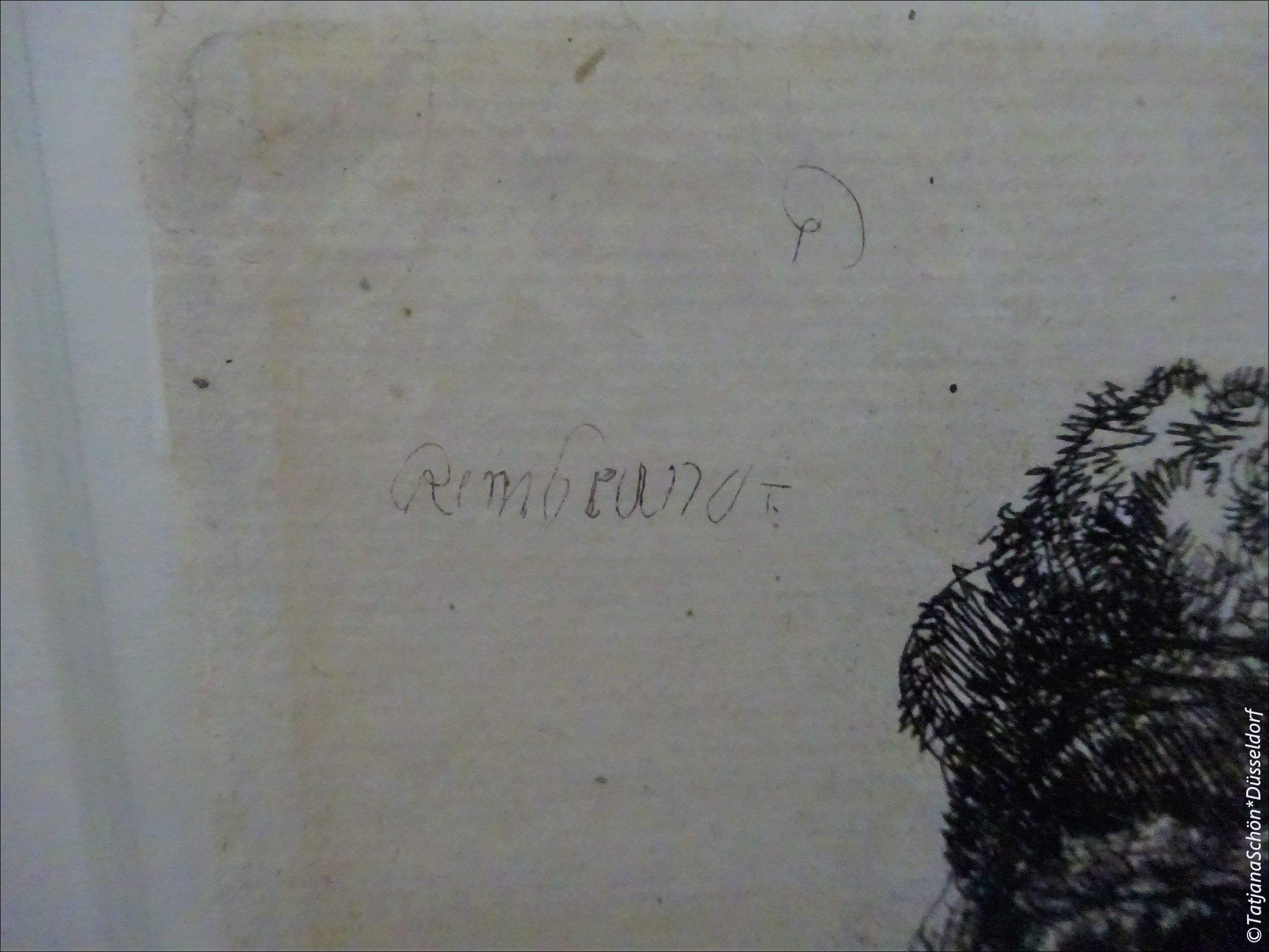 Штрихи к портрету Рембрандта с Рейна