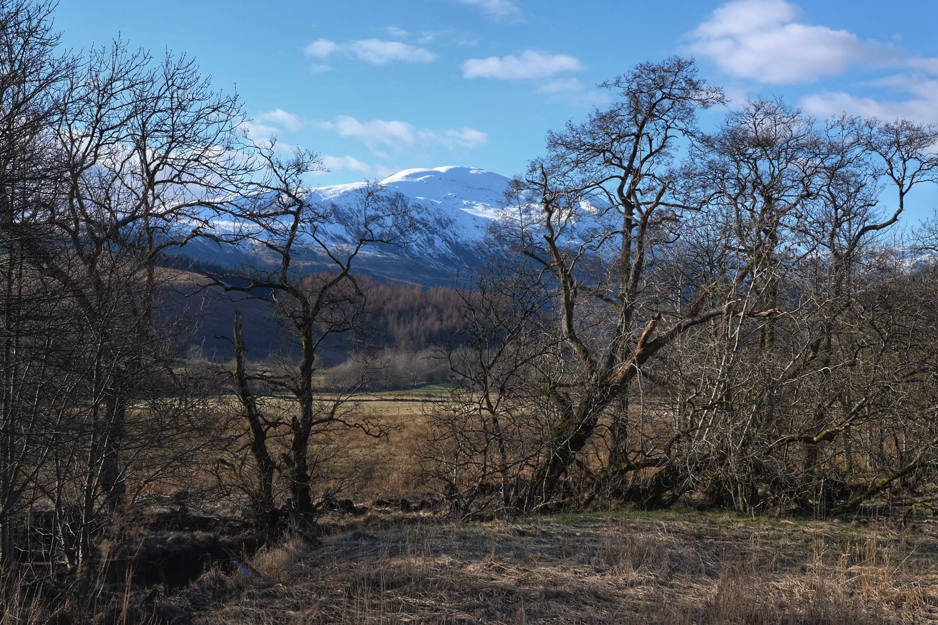 """""""Twas then we parted, In yon shandy glen, On the steep, steep side of Ben Lomond, Where, in purple hue, The Highland hills we view, And the moon coming out in the Gloaming"""" Verse from Loch Lomond"""