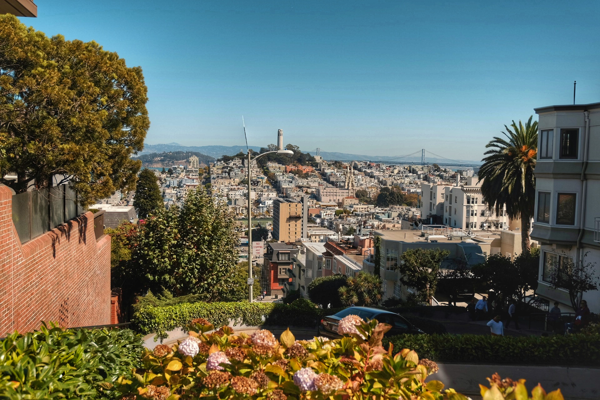 View of the city from Nob Hill.