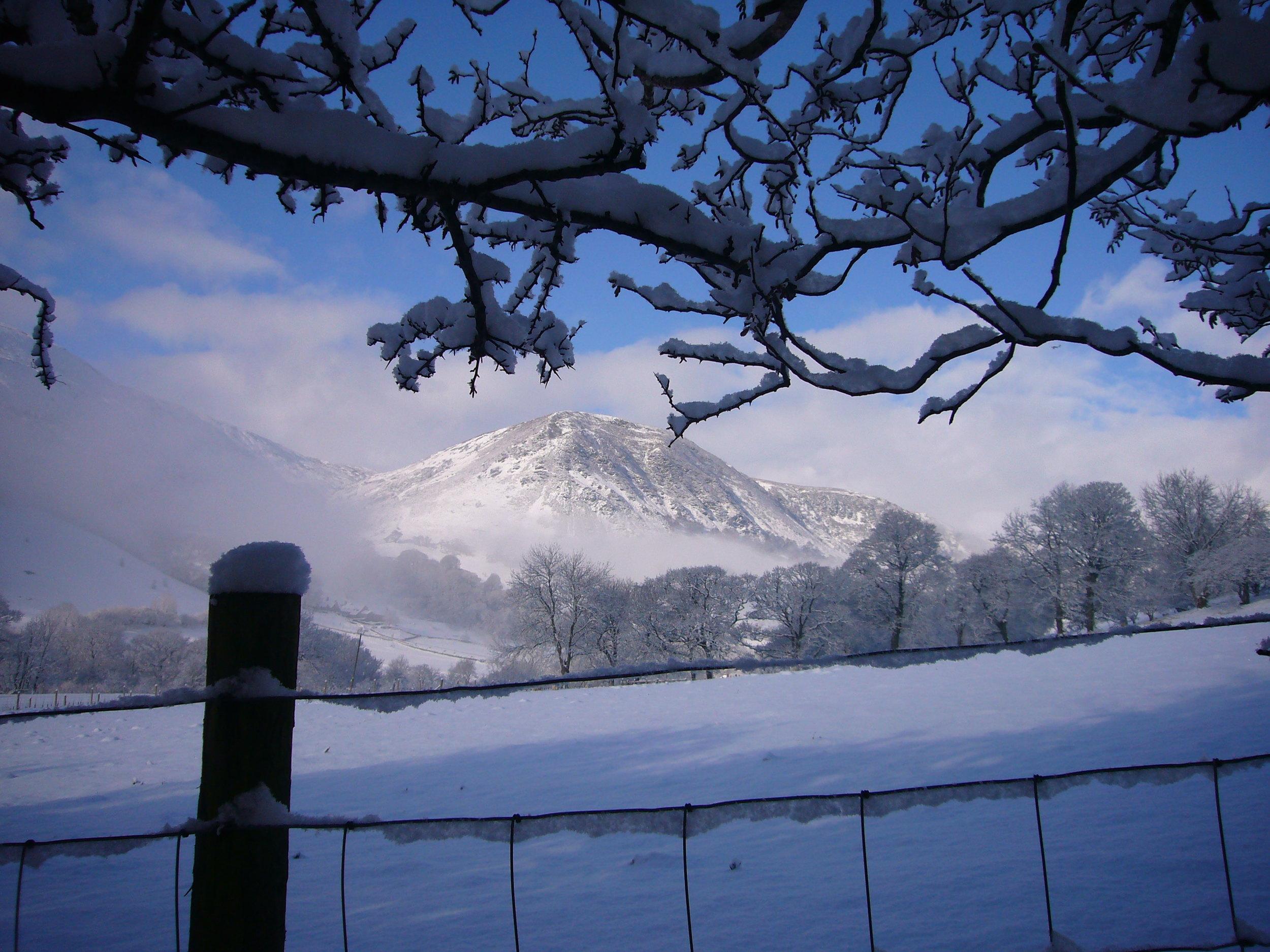 snowy mountain fence.JPG