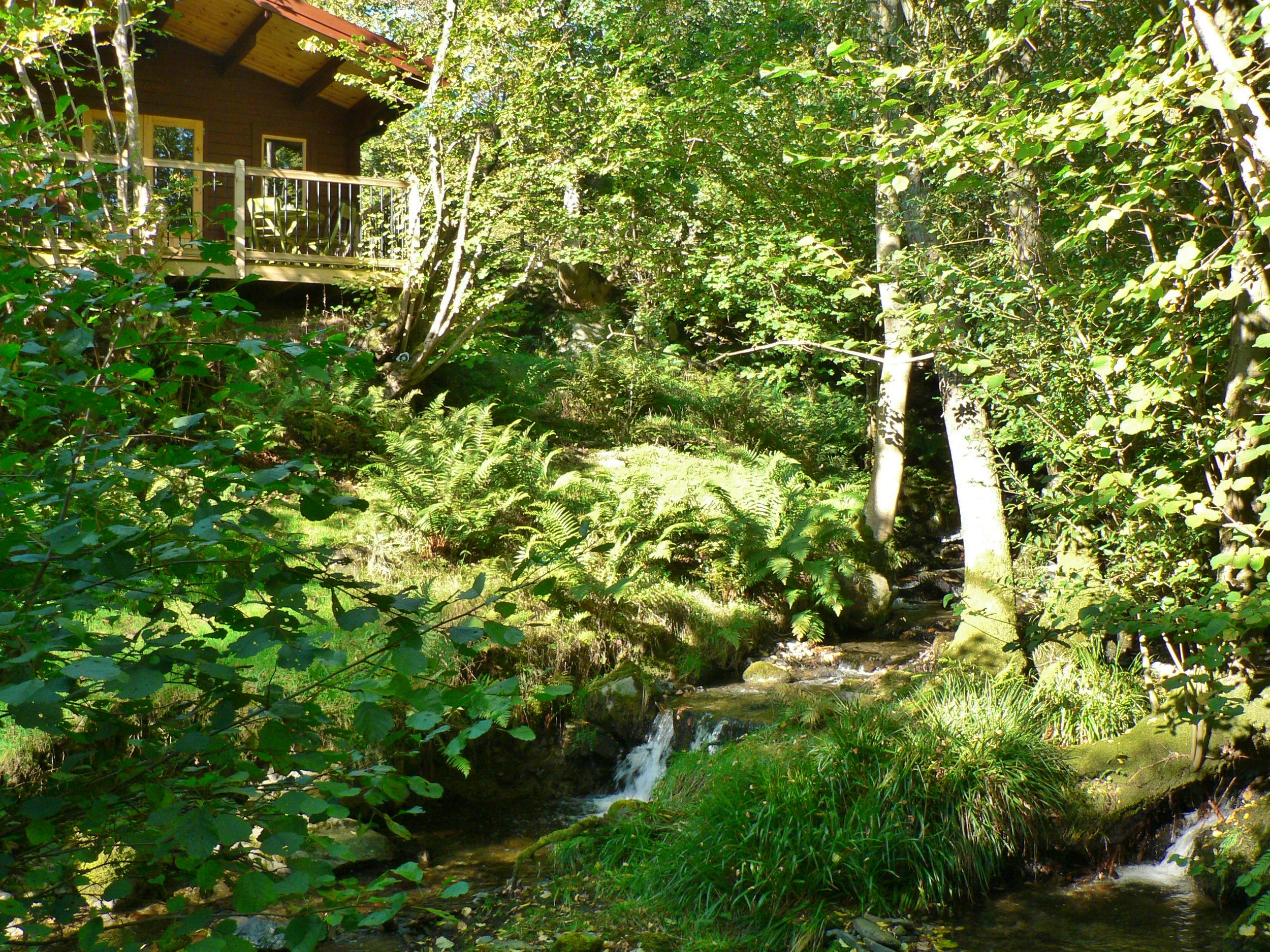 cabin by stream 0710.jpg
