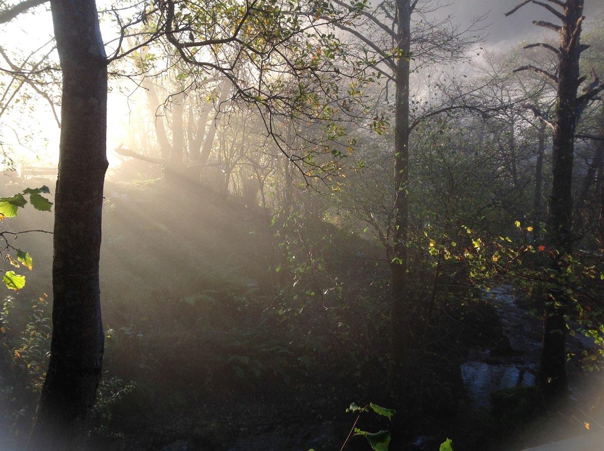 sunlight rays.jpg