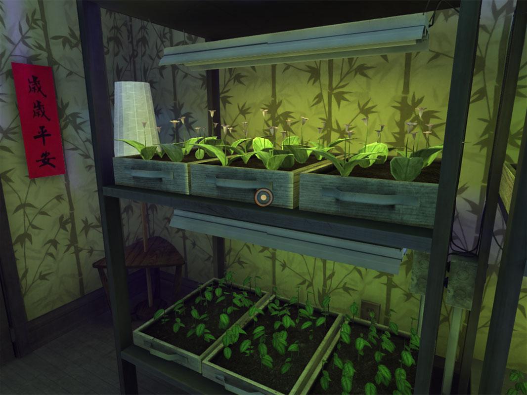 Dead Secret Circle--Rose's plants (2)