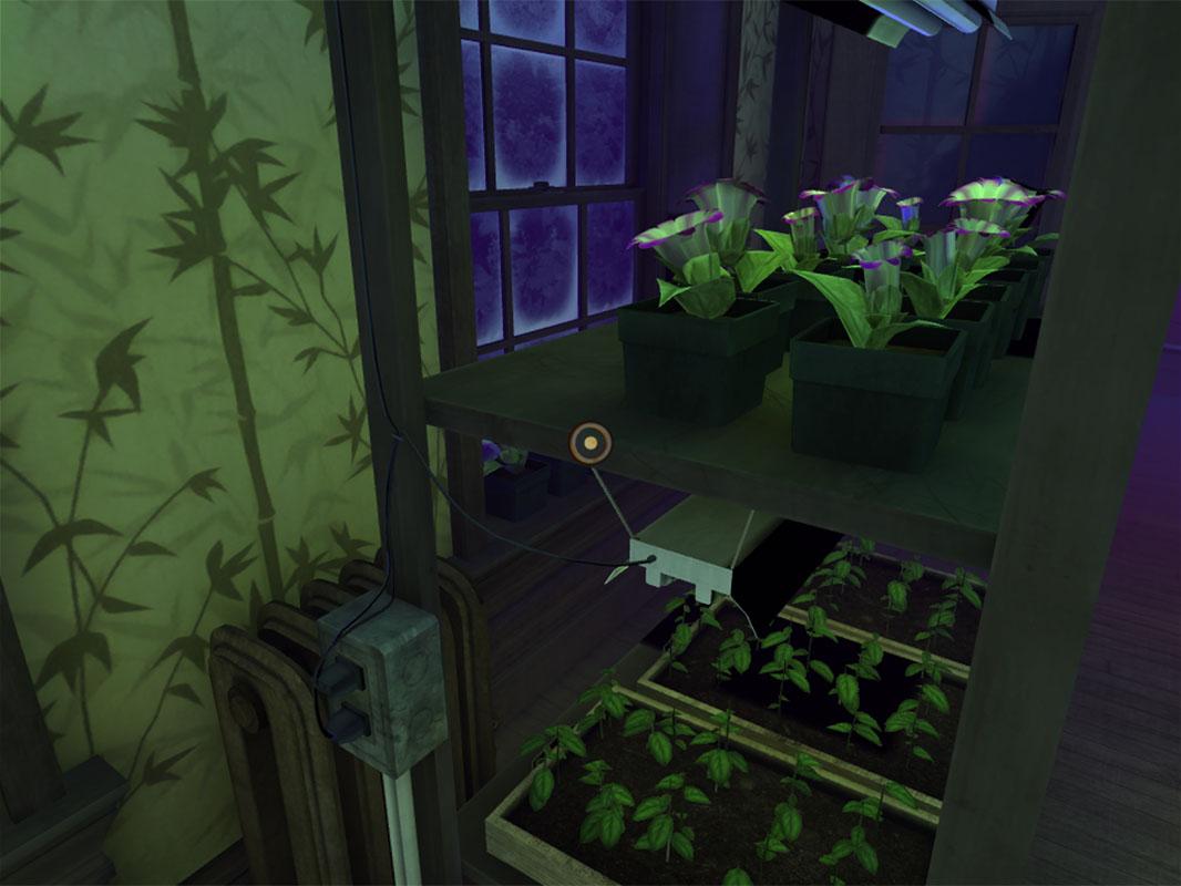 Dead Secret Circle--Rose's plants (3)