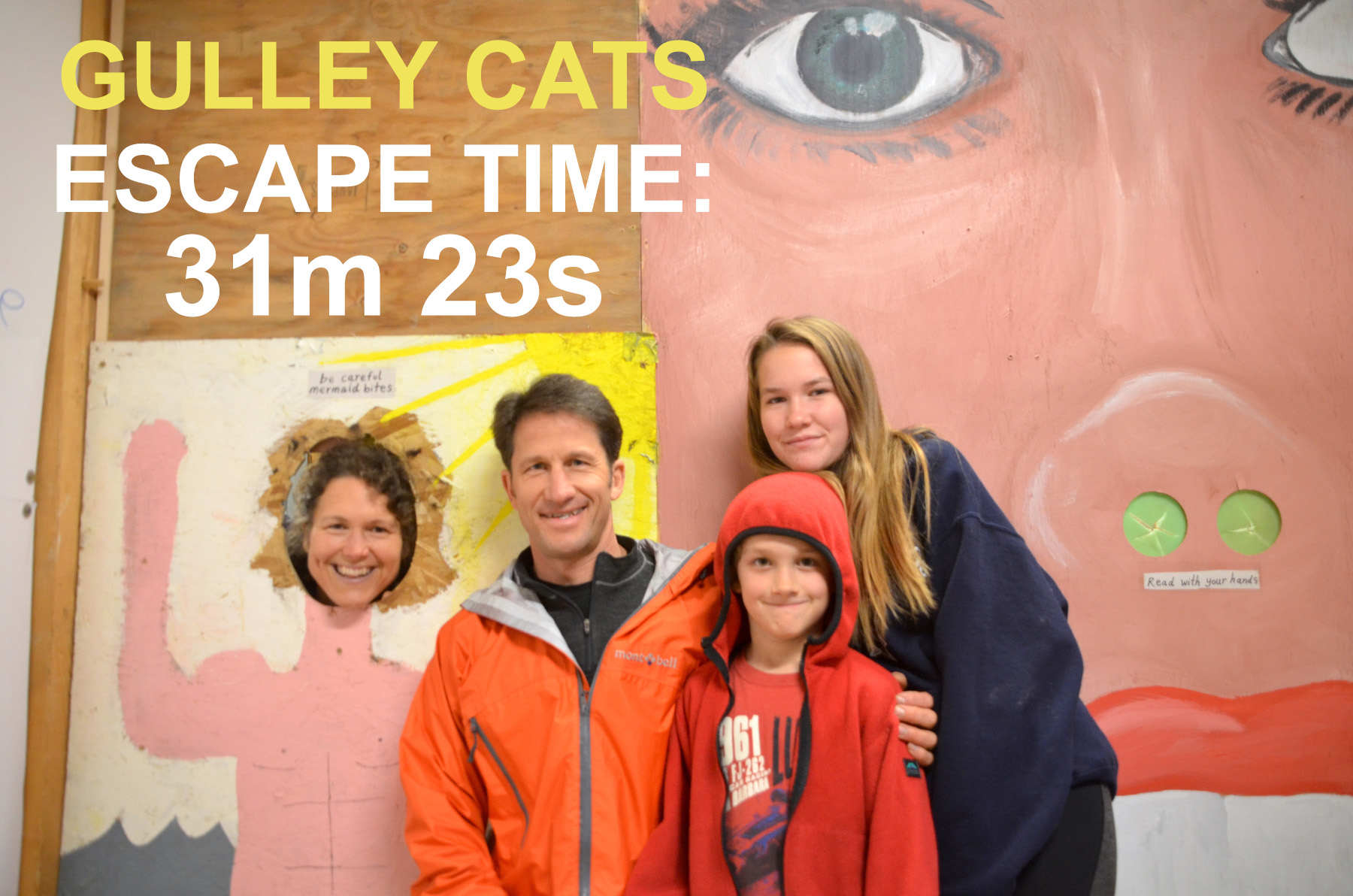 Gulley Cats.jpg