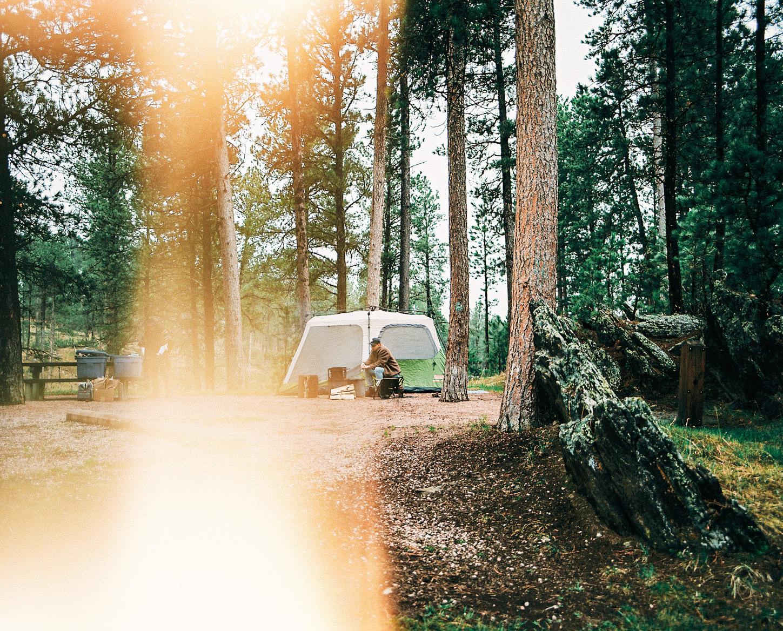 NSR_HappyScamper_RoadTrip_film-R1-04237-0007.jpg