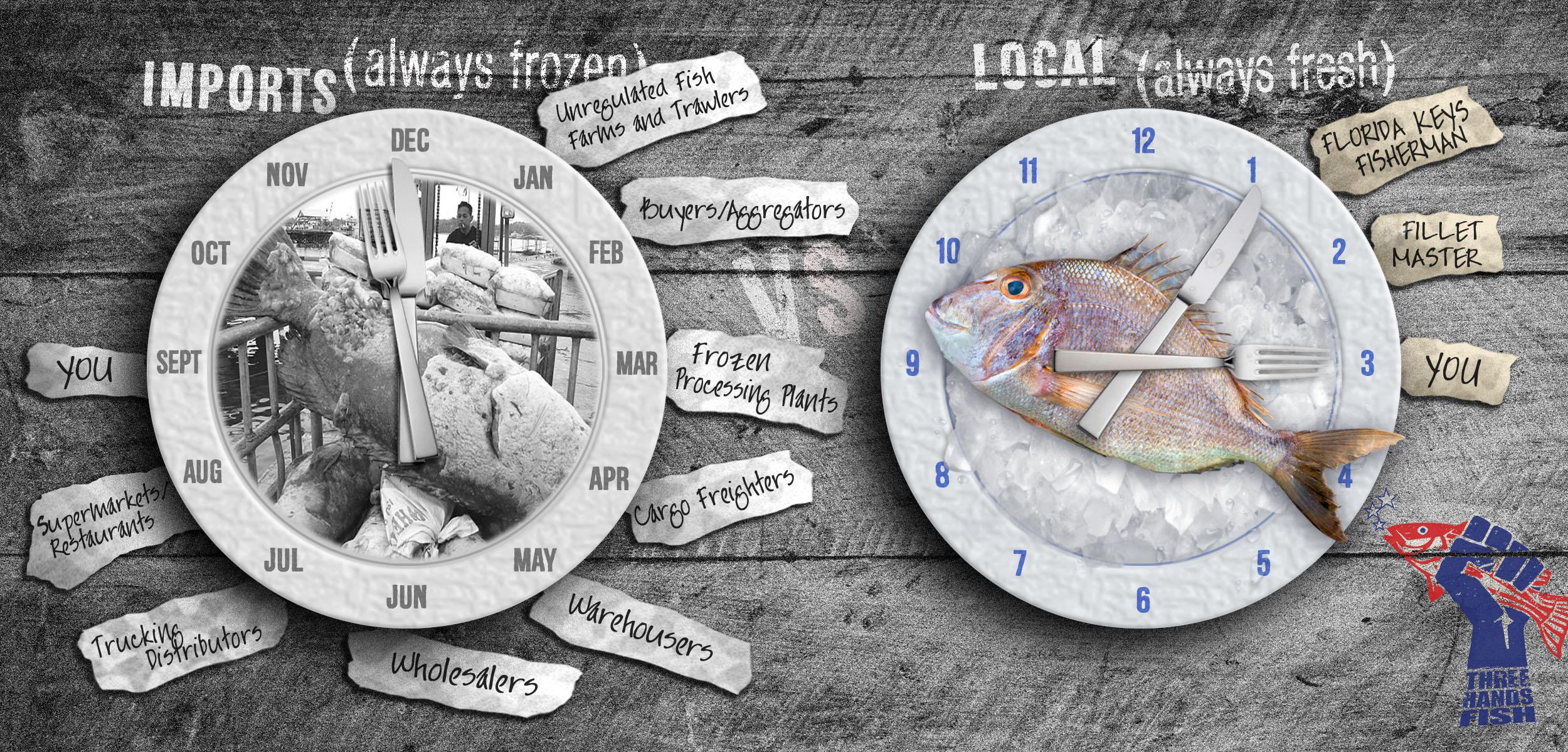 FINAL_Layout Concept Comparison THF Web Banner 11.8.16.jpg