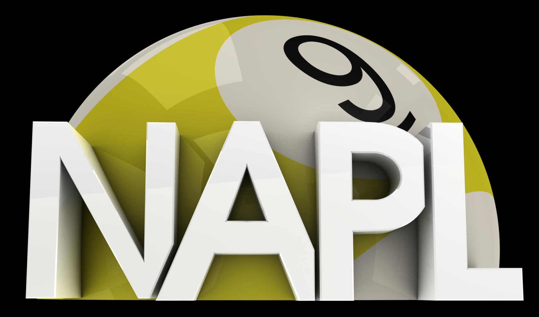 NAPL_9.png
