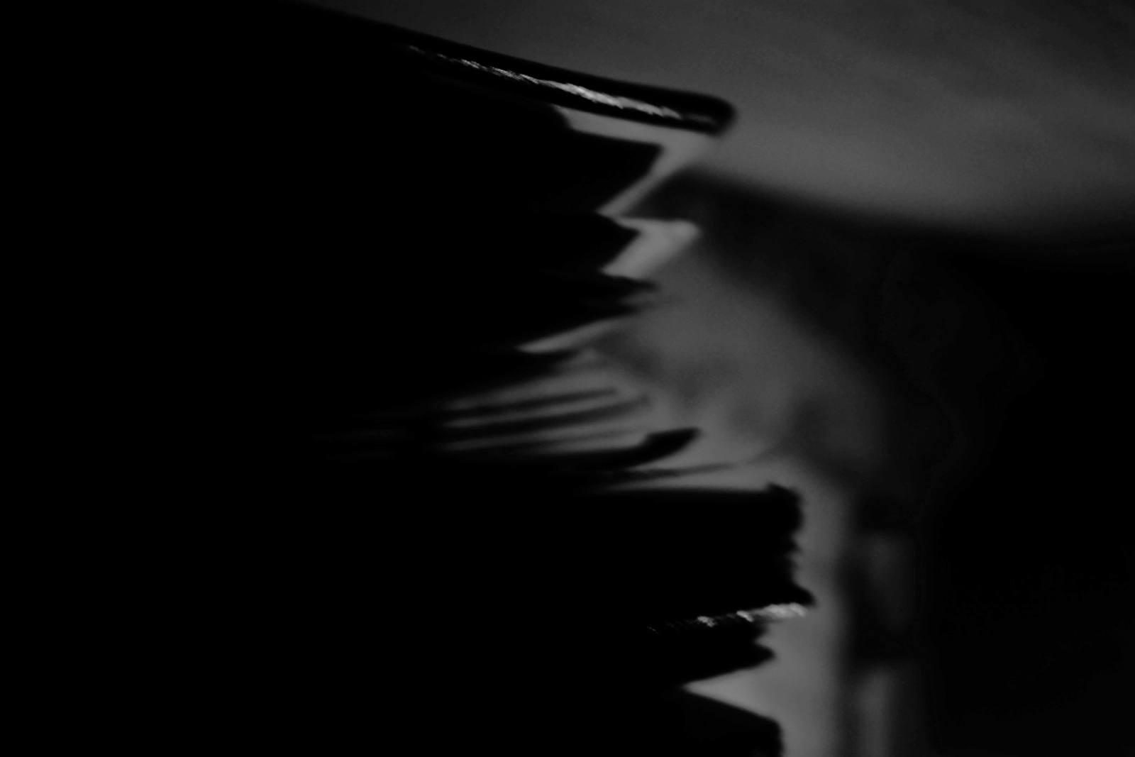 © Marie-Liesse Tardiveau : Une nuit absolument noire