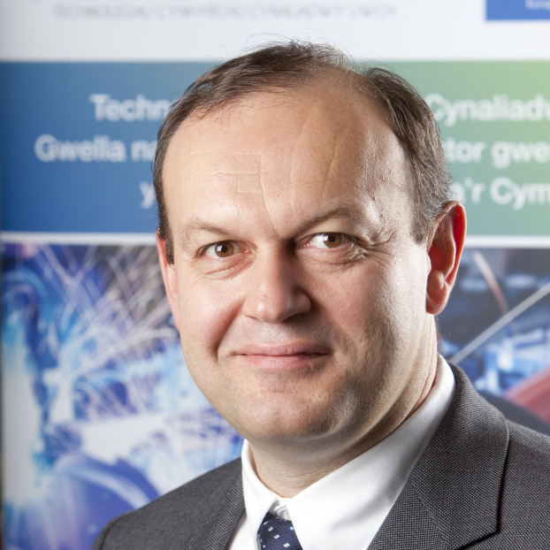 Professor Johann Sienz   Team Advisor  Personal Chair - Engineering  Swansea University, UK   Website