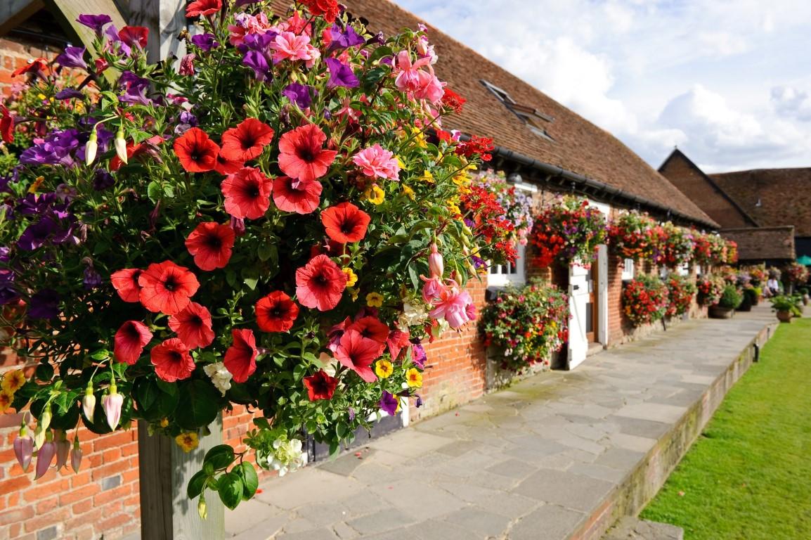 Internal gardens in full bloom