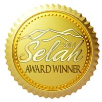 Winner of the 2013 Selah Award for First Fiction (Debut Novel)