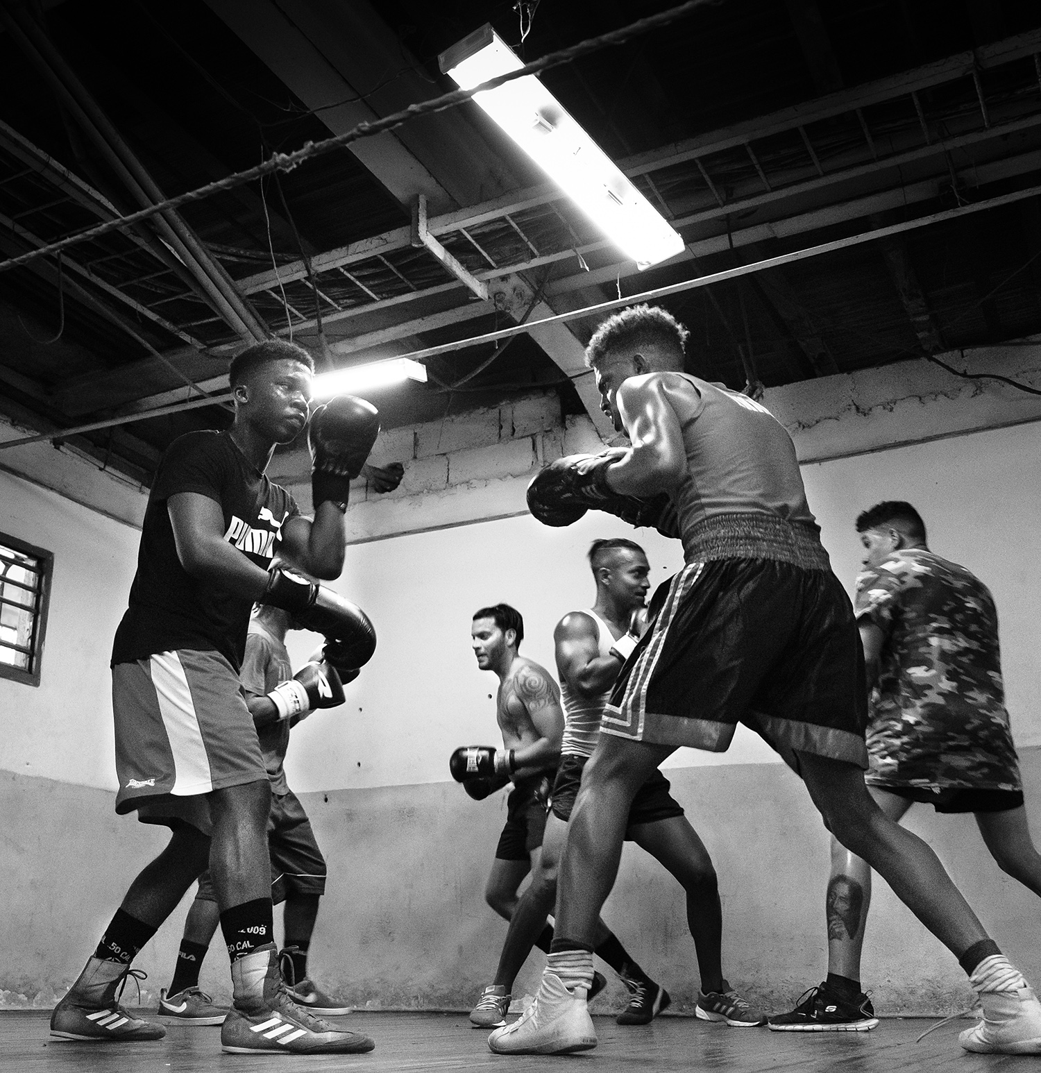 Sparring Sala Polivalente Kid Chocolate boxing academy