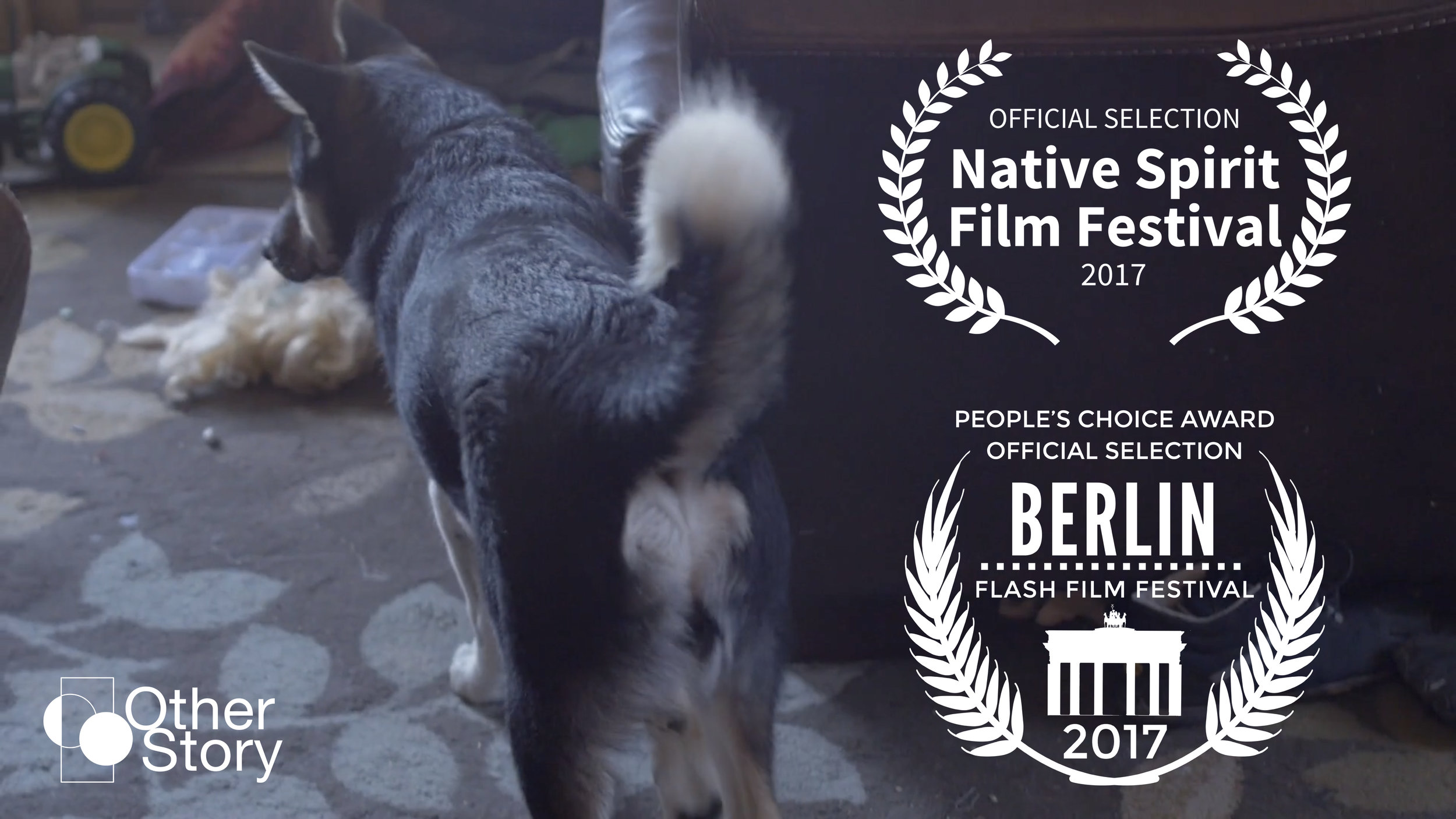 Tribe of all Colours - official selection