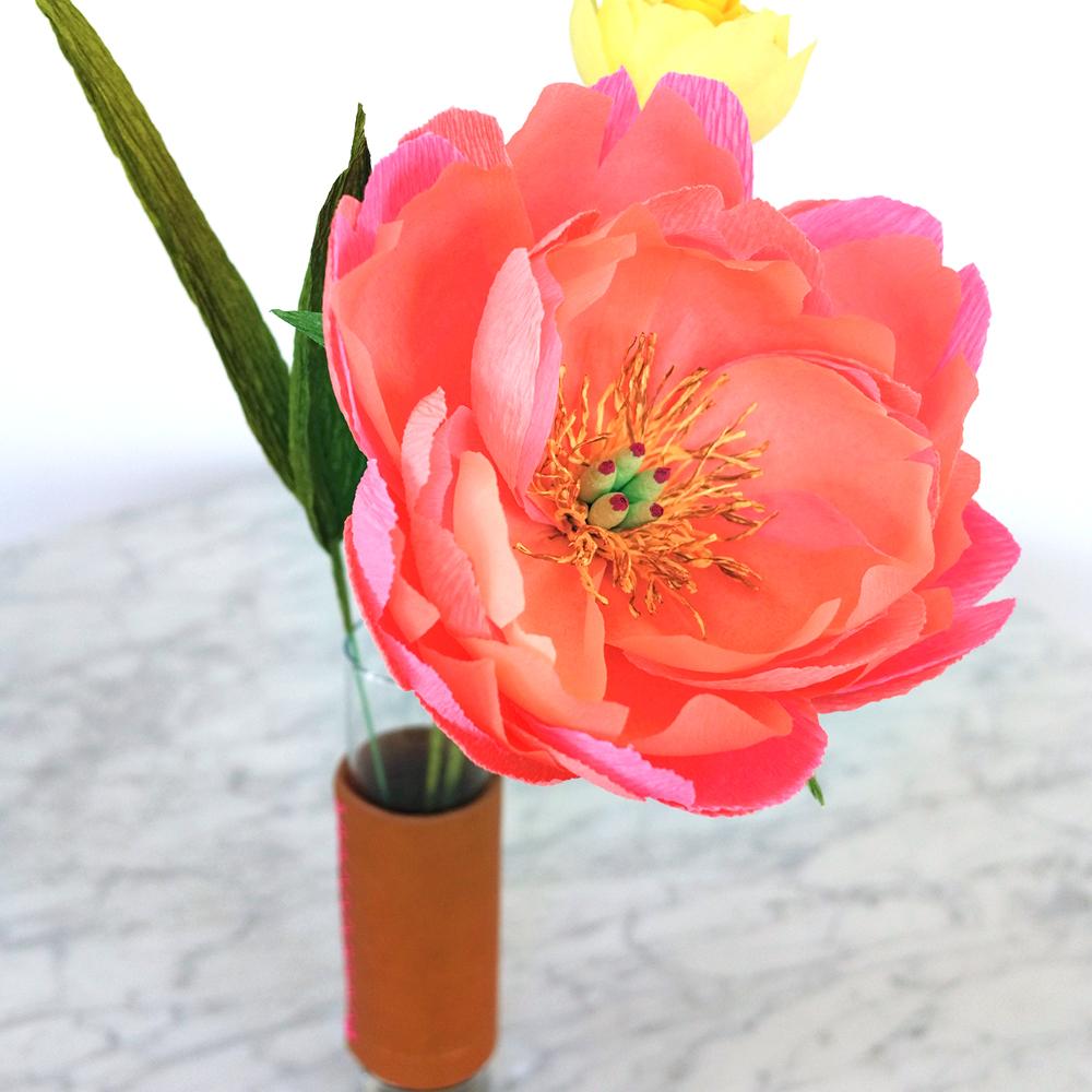 PR_Spring_CC_2.jpg