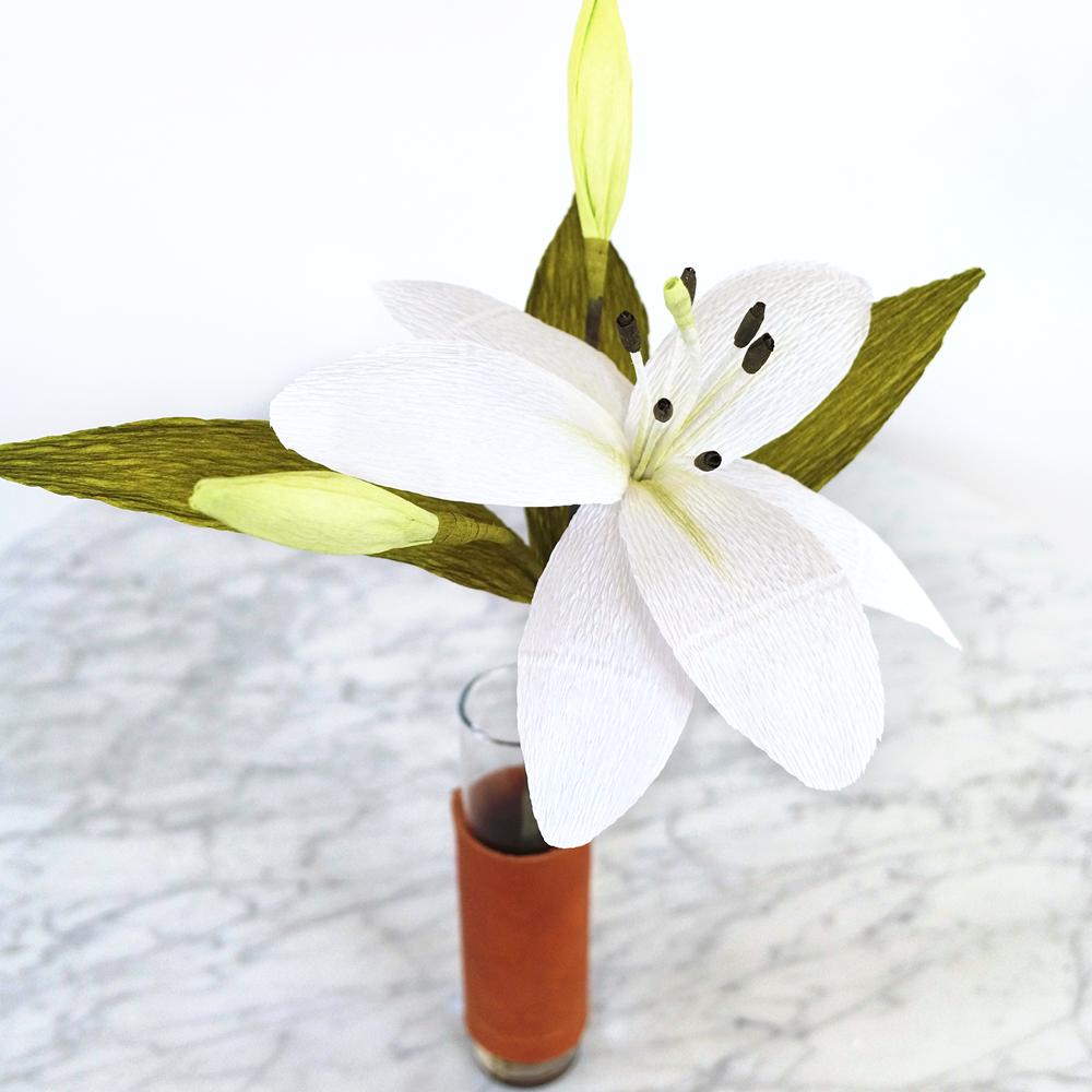 PR_Spring_L_.jpg