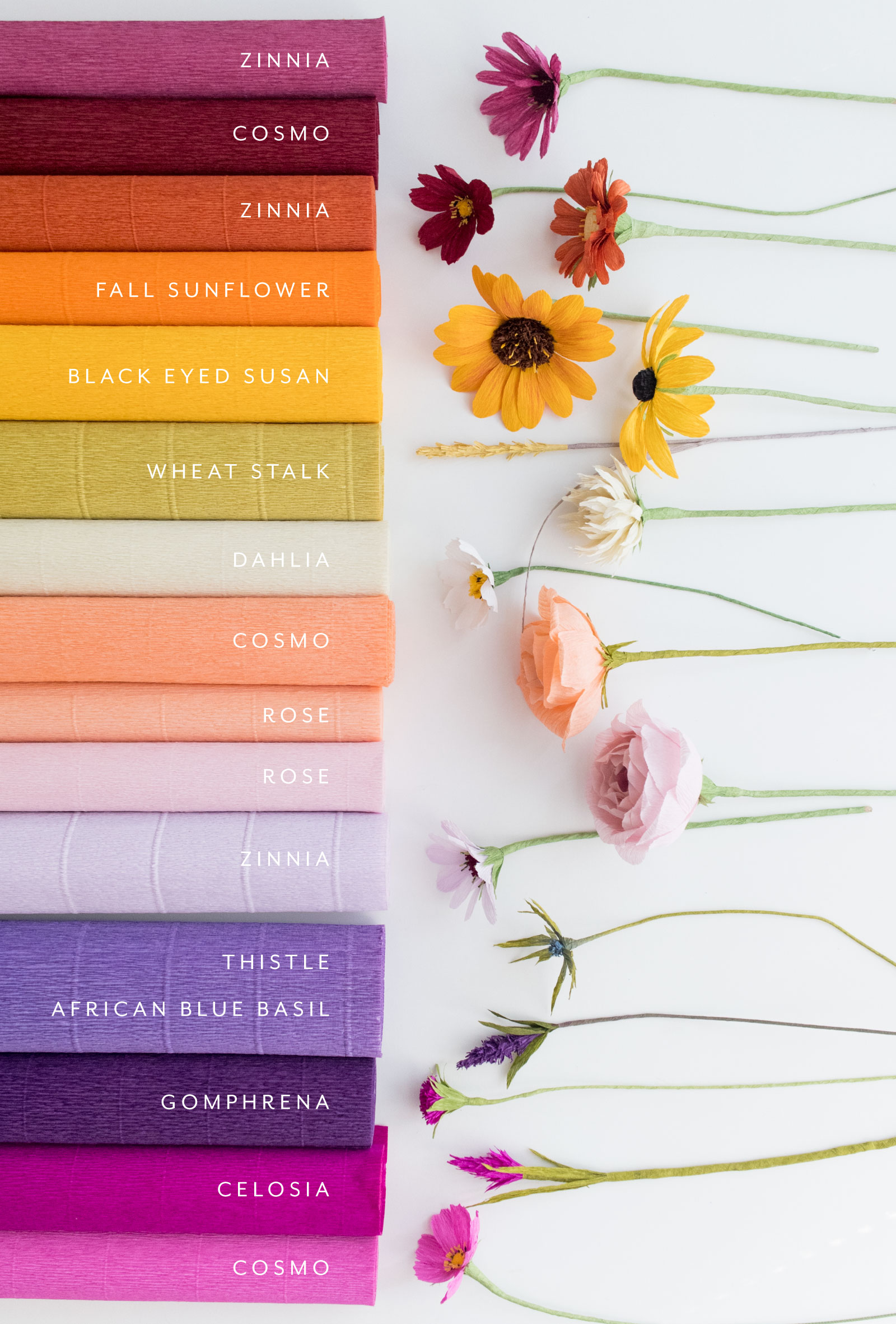 Paper Rose Co Fall Collection Ingredients.jpg