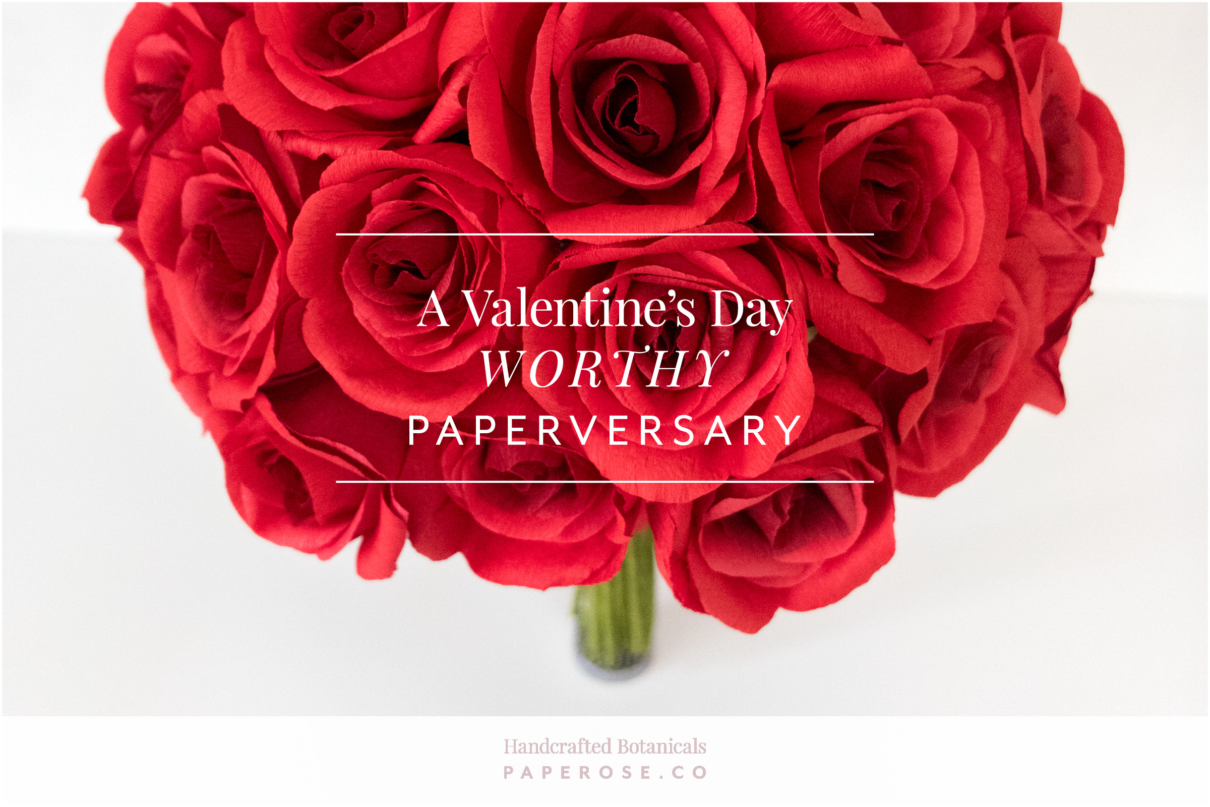 Paper Rose Co Red Roses Anniversary Gift