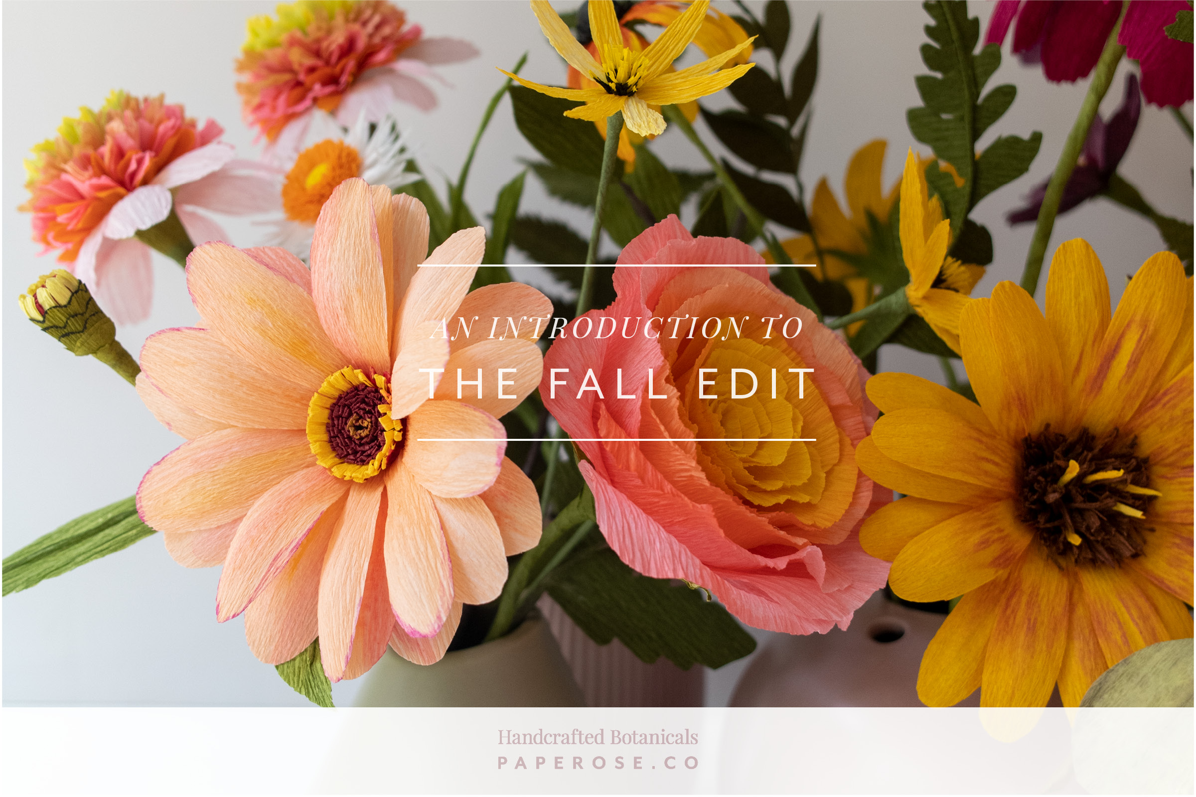 Paper Rose Co. An introduction  to The Fall Edit