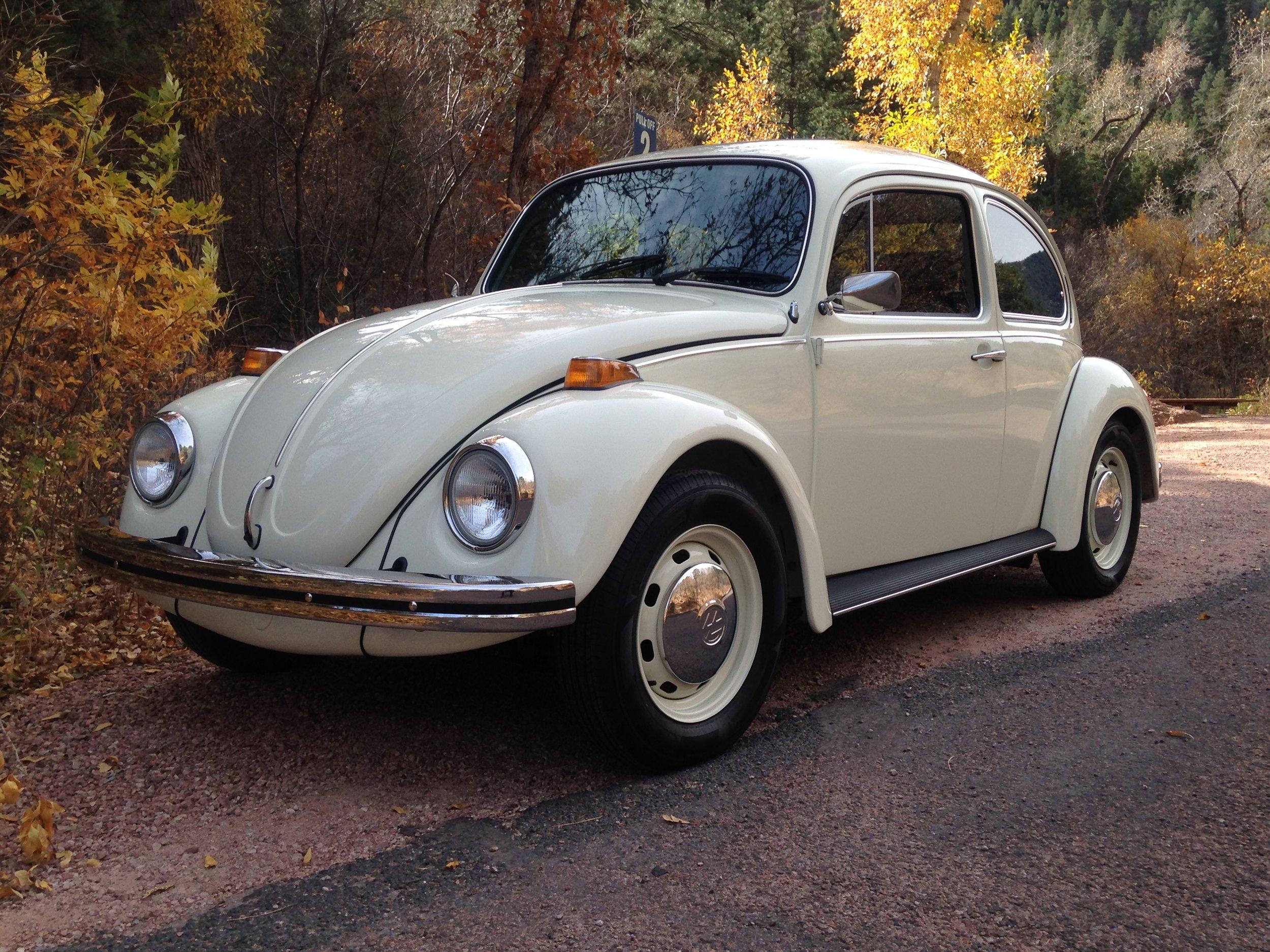 '73 Beetle  (2016)