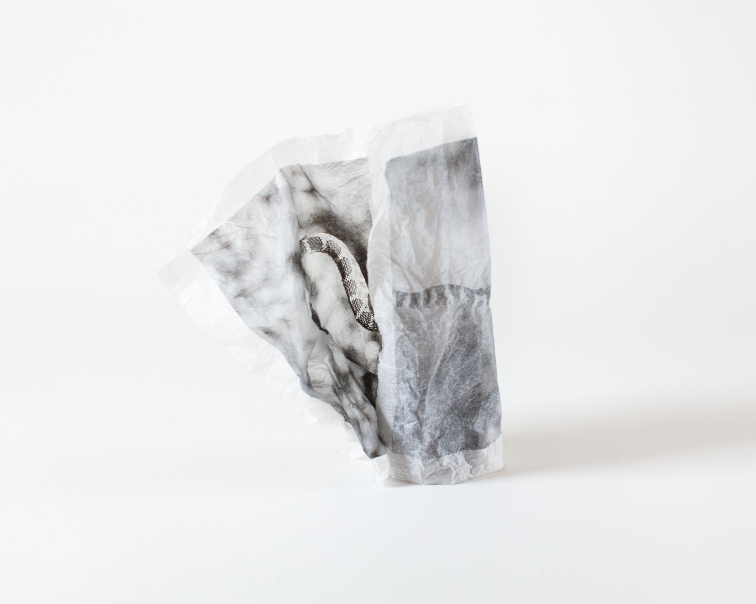 ways to wrap a snake to a brick-20.jpg
