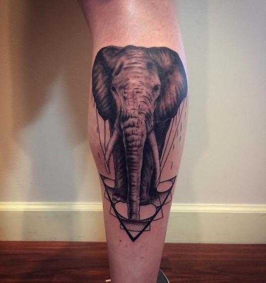elephantgeo.jpg