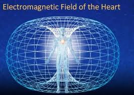 """The heart generates the largest electromagnetic field in the body. The electrical field as measured in an electrocardiogram (ECG) is about 60 times greater in amplitude than the brain waves recorded in an electroencephalogram (EEG).""    Rollin McCraty -   The Energetic Heart  ."