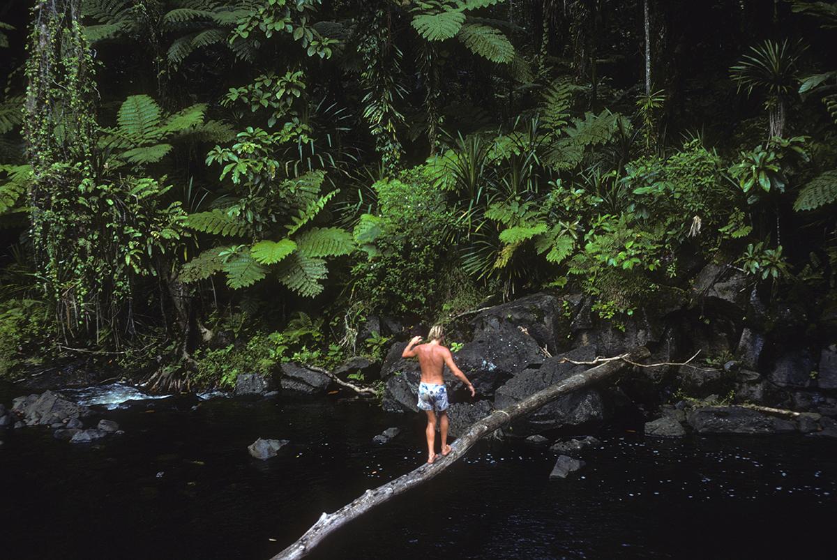 Fiji_log crossing.jpg
