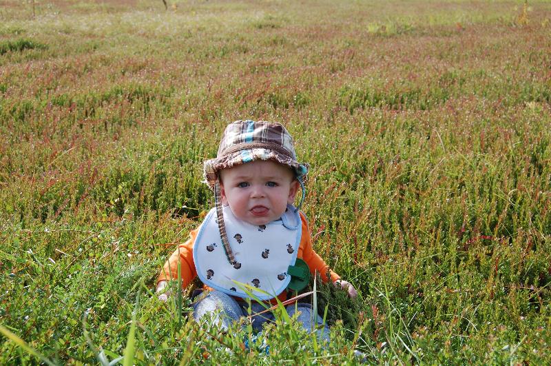 """Max """"enjoying"""" the bog (:"""