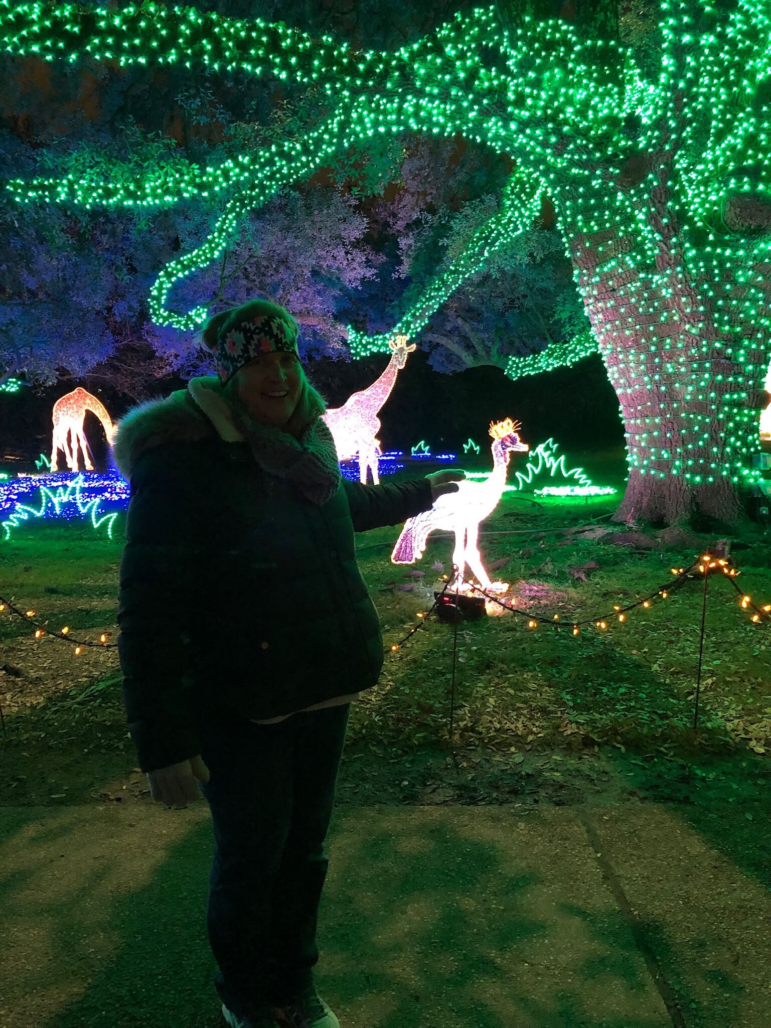 - -we took my Mom to see the lights at the Houston Zoo