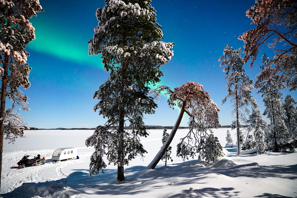 Northern lights with sled.jpg