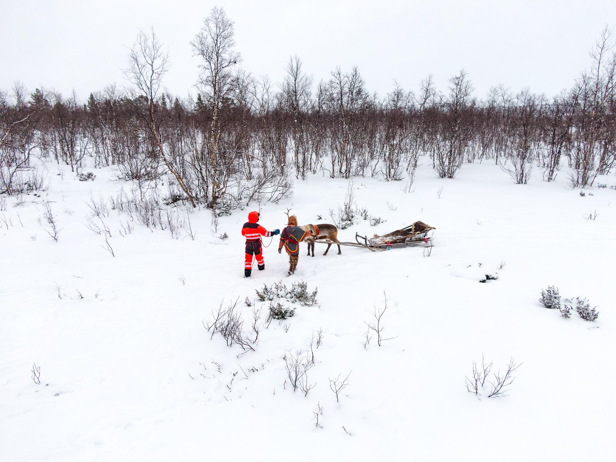 Reindeer-Sleigh-Rides.jpg