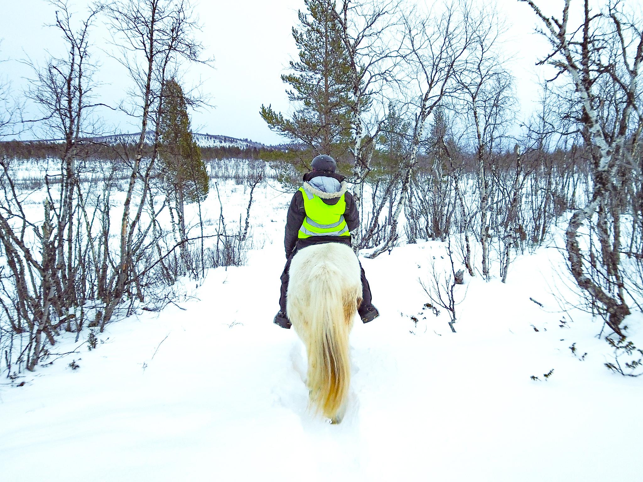 horseback-riding-Ofelas-ranch.jpg