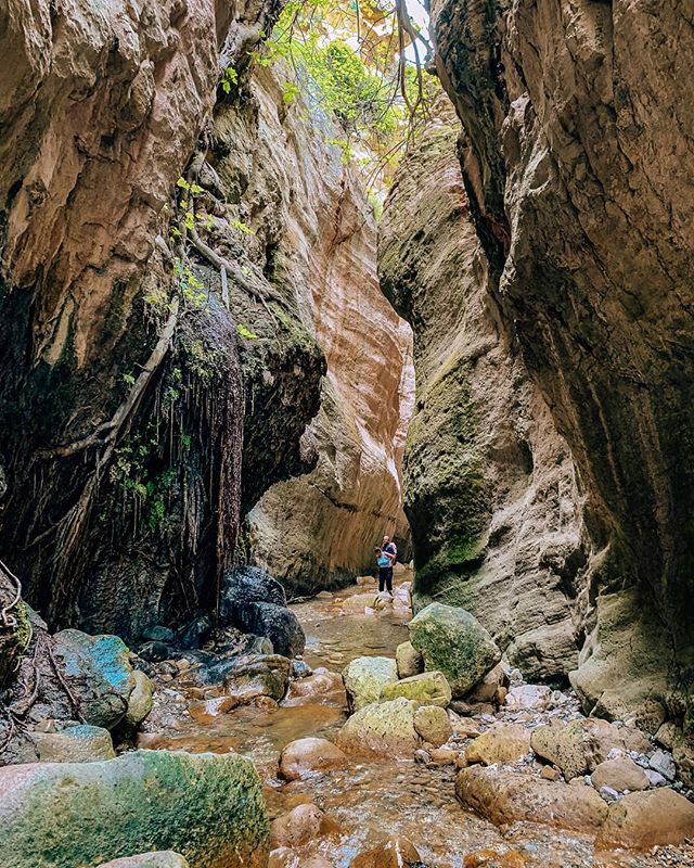 Exploring the Avakas Gorge 😍 Deep inside the canyon, you can spot rare flowers, reptiles, and even wild goats 😊 Thats what I love about Cyprus, the country is so diverse, mountains, gorges, awesome beaches, what do you want more 😍 . . . . #cyprus #visitcyprus #avakasgorge #paphos  #travel #Travelgram #traveling #Travelphotography #travelling #travelblogger #traveler #topolindratravels#dirtybootsmessyhair #youmustsee#letsgoeverywhere #traveltagged#dirtybootstravel #thediscoverer#darlingescapes #sidewalkerdaily#sheisnotlost #seetheworld#traveladdicts #travelnow#loveandwildhearts #dametraveler#girlsdreamtravel #wearetravelgirls#ladiesgoneglobal