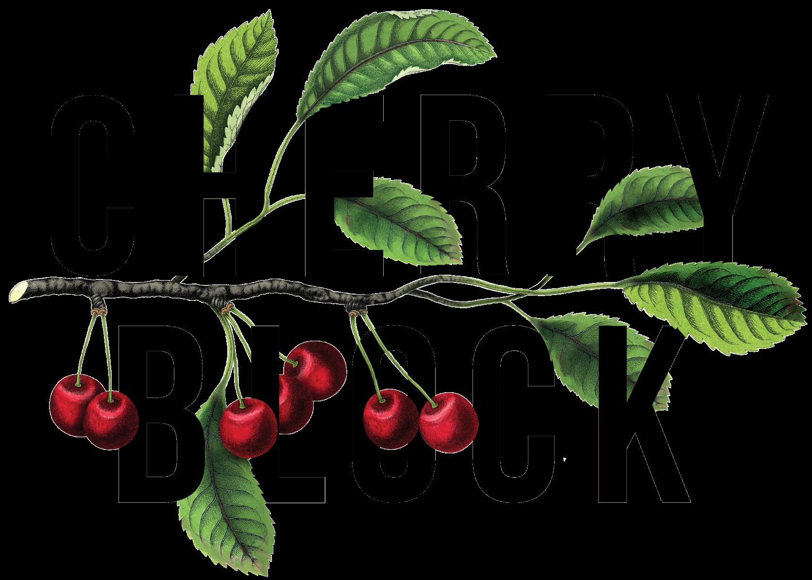 cherry-block-logo - medium.png