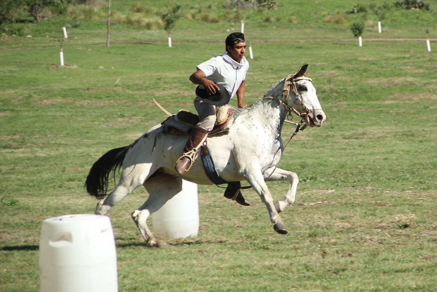 Playing Polo at Estancia Los Potreros