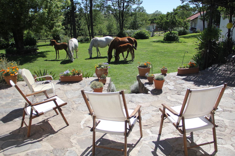 Relaxing on the Patio at Estancia Los Potreros