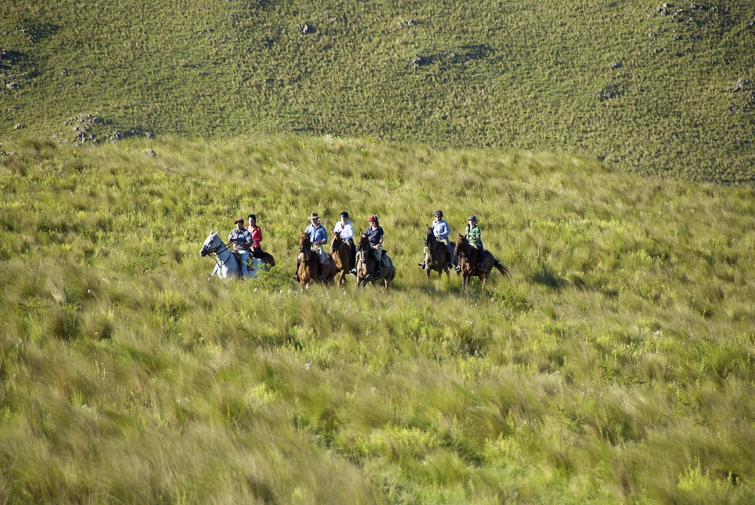 Horseback Riding in  Córdoba