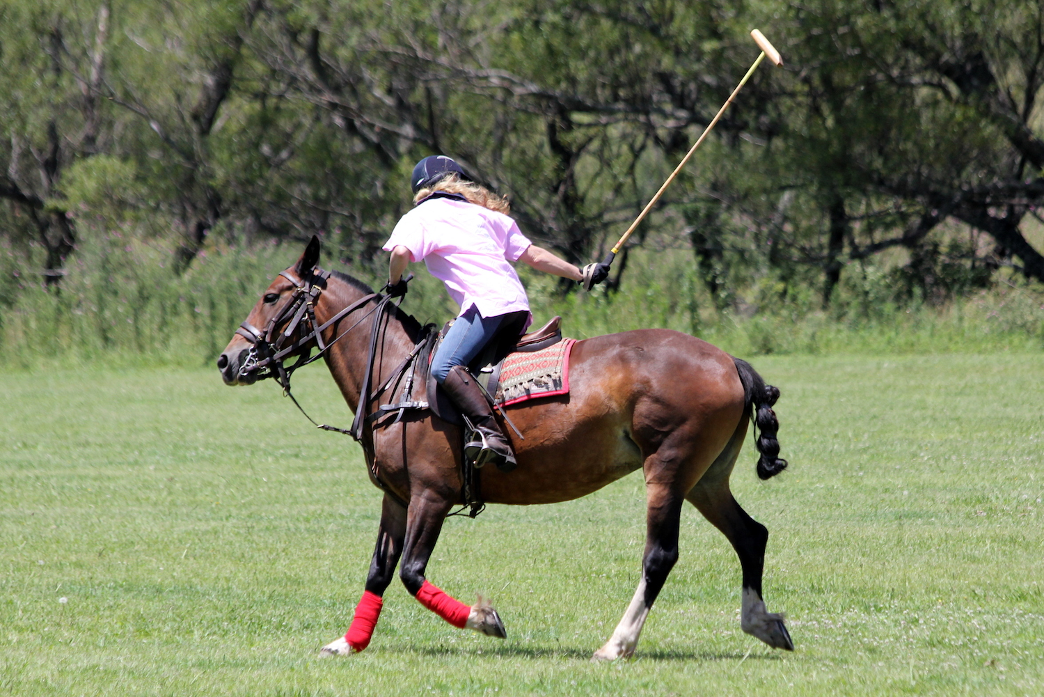 Polo Match at Estancia Los Potreros