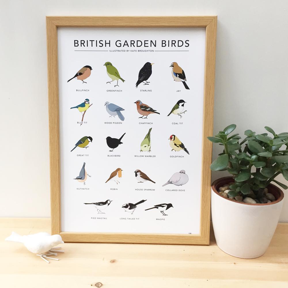 garden_birds_main_WEB.jpg