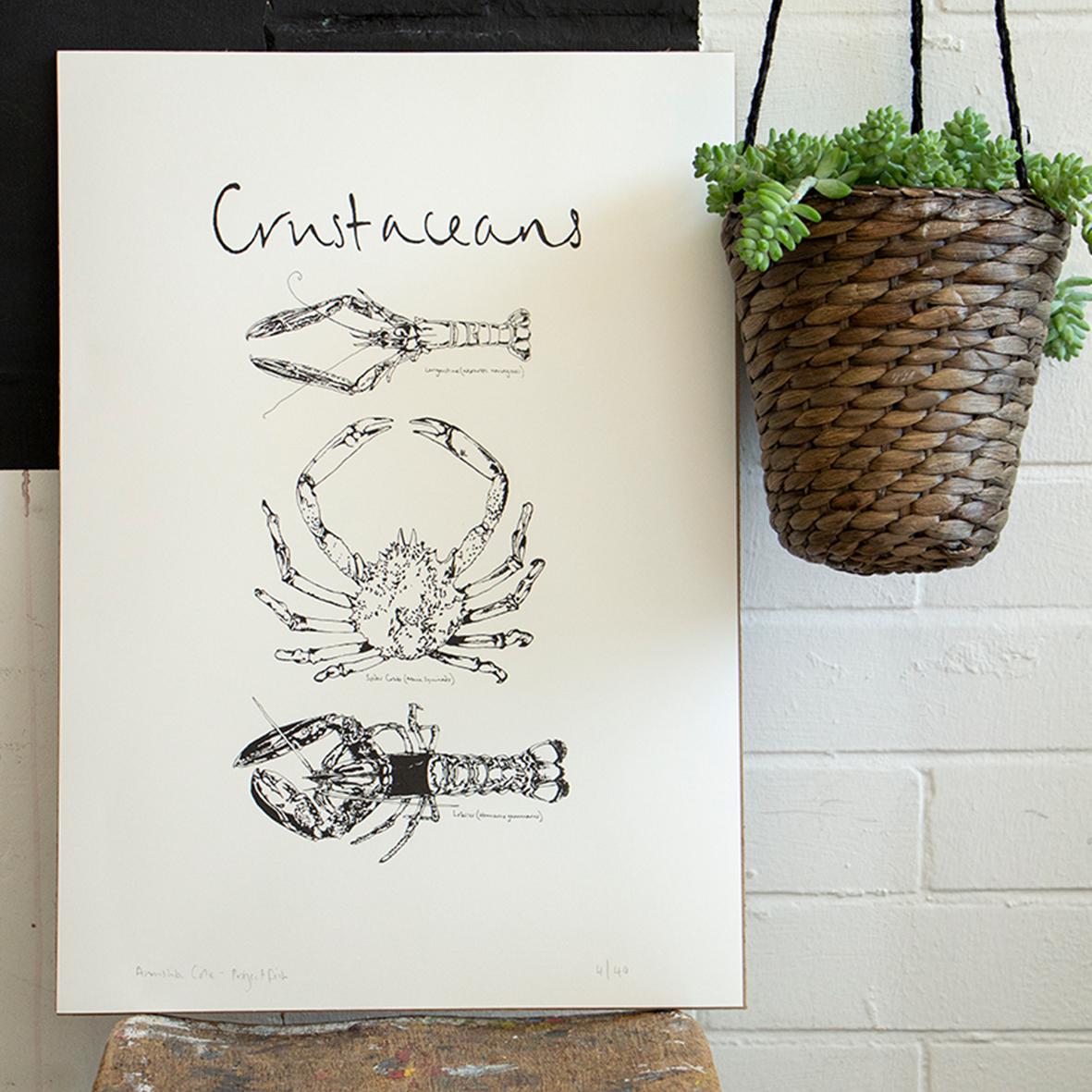 crustaceans square.jpg