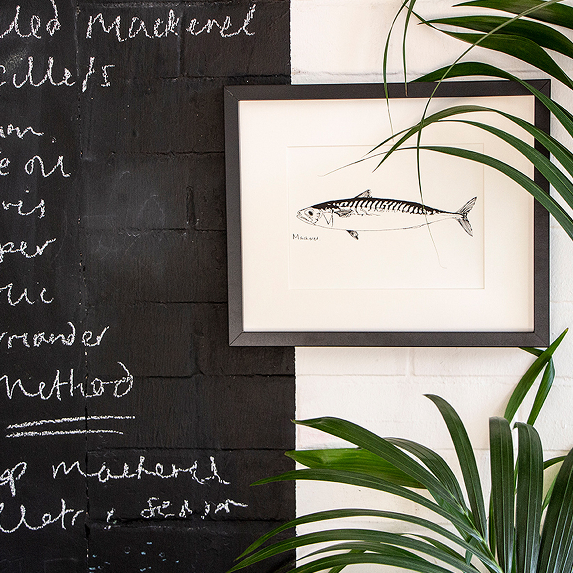 mackerel_square1.jpg