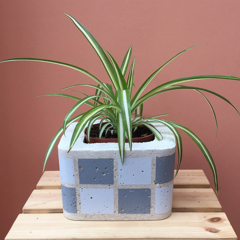 twig-plants-and-pots-concrete-indoor-plant-pot-checkerboard-grey.jpg