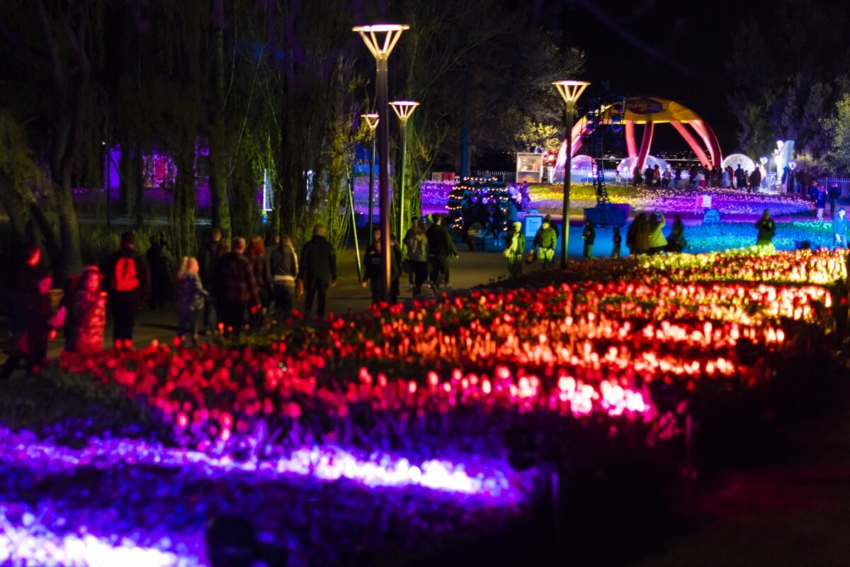 A display of Floriade's Nightfest  Sourced from: Floriade Australia