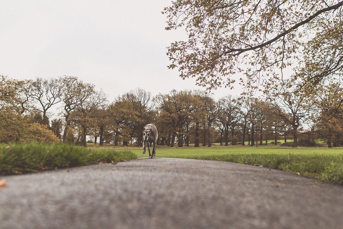 BirminghamFamilyPortraitPhotographyFilm_0032.jpg