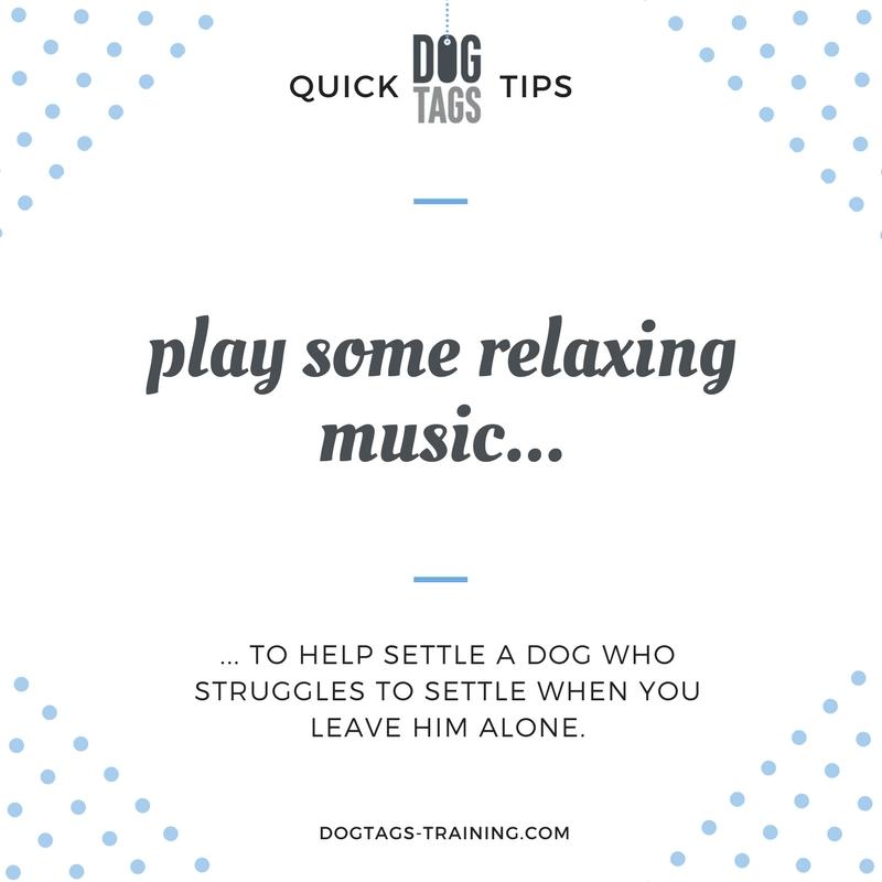 quick tips 15.jpg